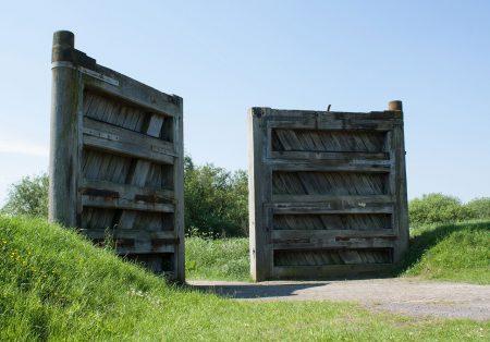 Atveriami kiemo vartai ir specialistų rekomendacijos